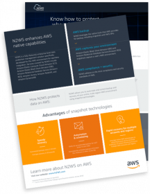 AWS and N2WS Infographic: avoid the costs of downtime